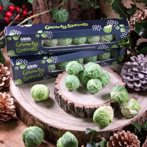 GNAW Sprouts 8 pack