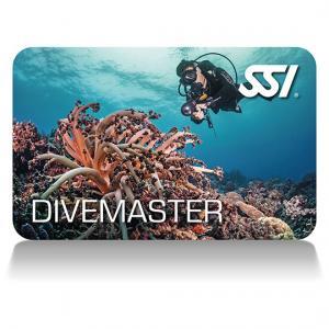 Divemaster - SSI Dykledare (DM) (Kurs)
