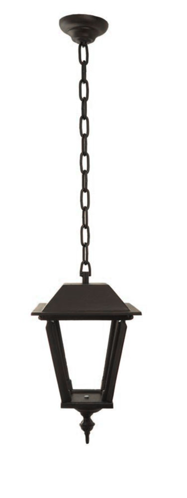 Outdoor Ceiling Lighting Pendant Light With Chain L4