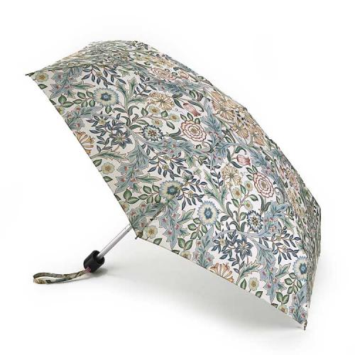 Umbrella Morris - Tiny, Wilhelmina