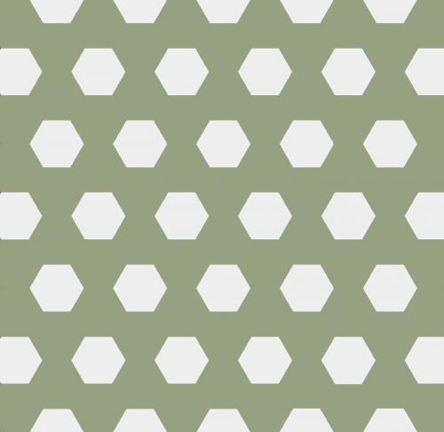 Floor tiles - Hexagon 10 x 10 cm green/white Winckelmans