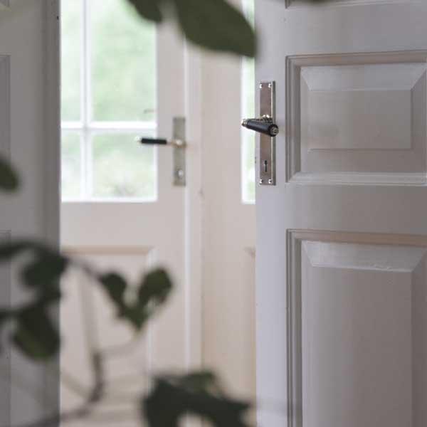 Inspiration -  Door handles with back plate