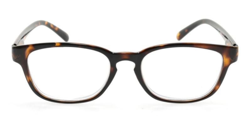 Calais - blanka bruna glasögon