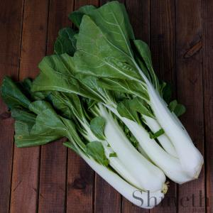 Kinesisk Vitkål - Pak Choi (Brassica rapa)
