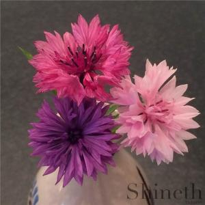 Blåklint - Centaurea Cyanus (rosa, röd & lila)