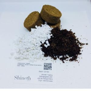 Shineth Tradings Bonsai-startkit 2