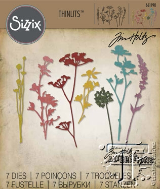 Sizzix Thinlits Dies - WILDFLOWER - Tim Holtz