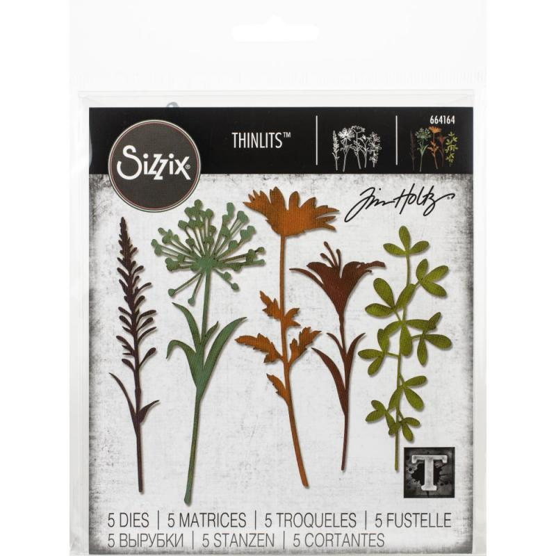 "Sizzix Thinlits Dies - WILDFLOWER STEAMS ""2 - Tim Holtz"