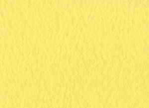 Cardstock - Frosted Yellow - OP - Bazzill