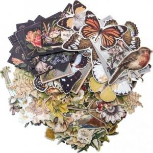 LAYERS BOTANICAL - Idea-Ology Ephemera Pack - Tim Holtz