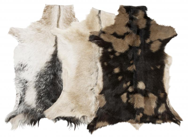 Goaty Goatskin - Natural