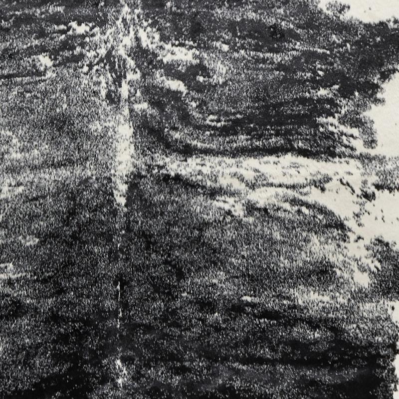 Vilgot Kuhfellteppich - Exotisch Schwarz/Weiß