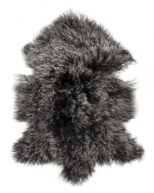 Shansi Tibetlamb - Black Snowtop