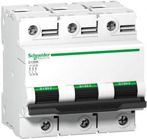 Schneider Electric - AC Automatsäkring 3-polig - 125 A  C-kurva