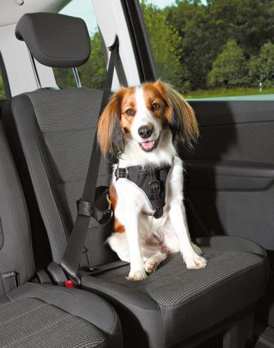 Trixie Bilsele Dog Protect