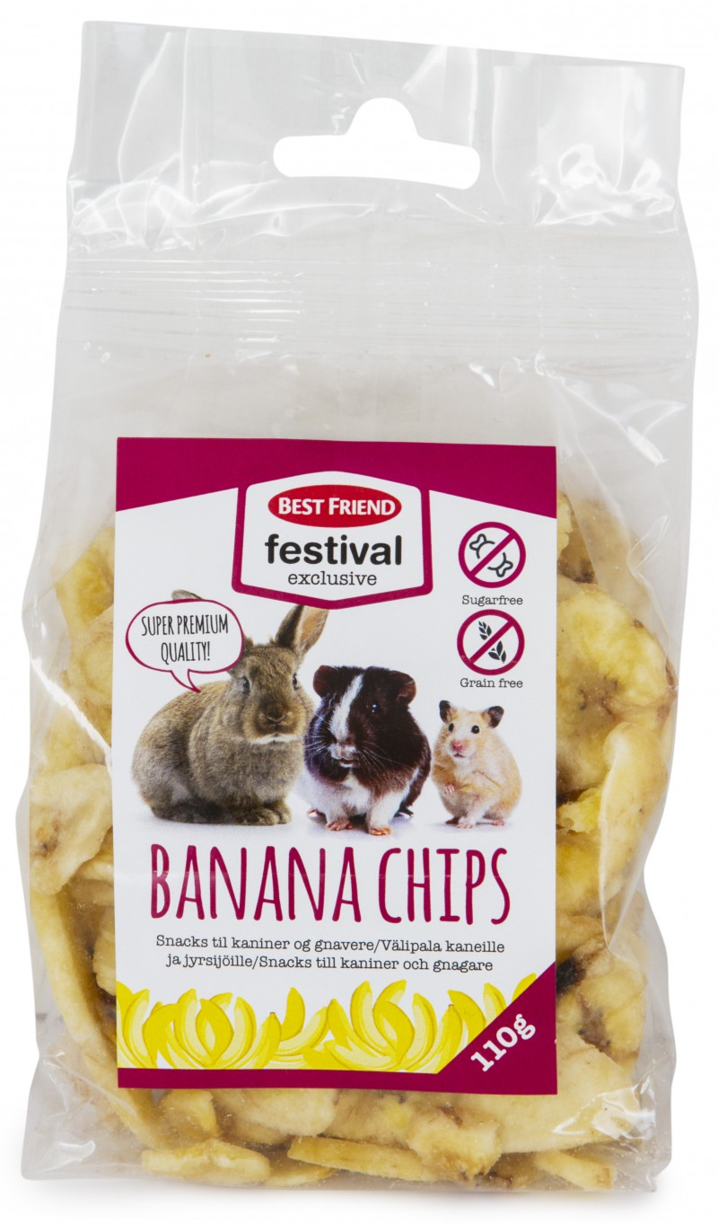 Best Friend Festival Exlusive Banan Chips