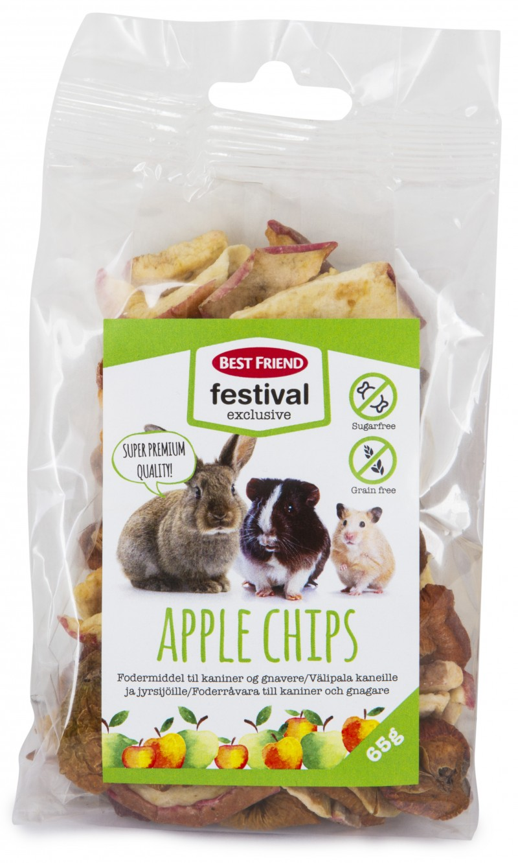 Best Friend Festival Exclusive Äpple Chips