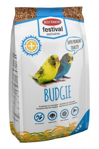 Best Friend Festival Exclusive Budgie