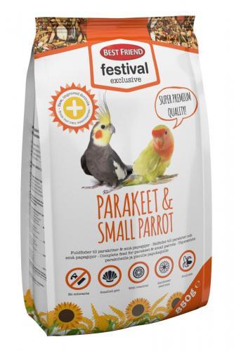 Best Friend Festival Exclusive Parakeet & Parrot