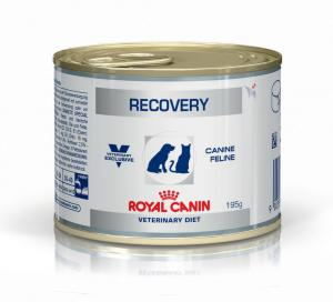 Royal Canin Veterinary Diets Recovery Wet