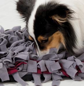 "Trixie Dog Activity ""Sniffing Carpet"", Nivå 1"