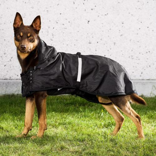 Back on Track Hundregntäcke med stoppning