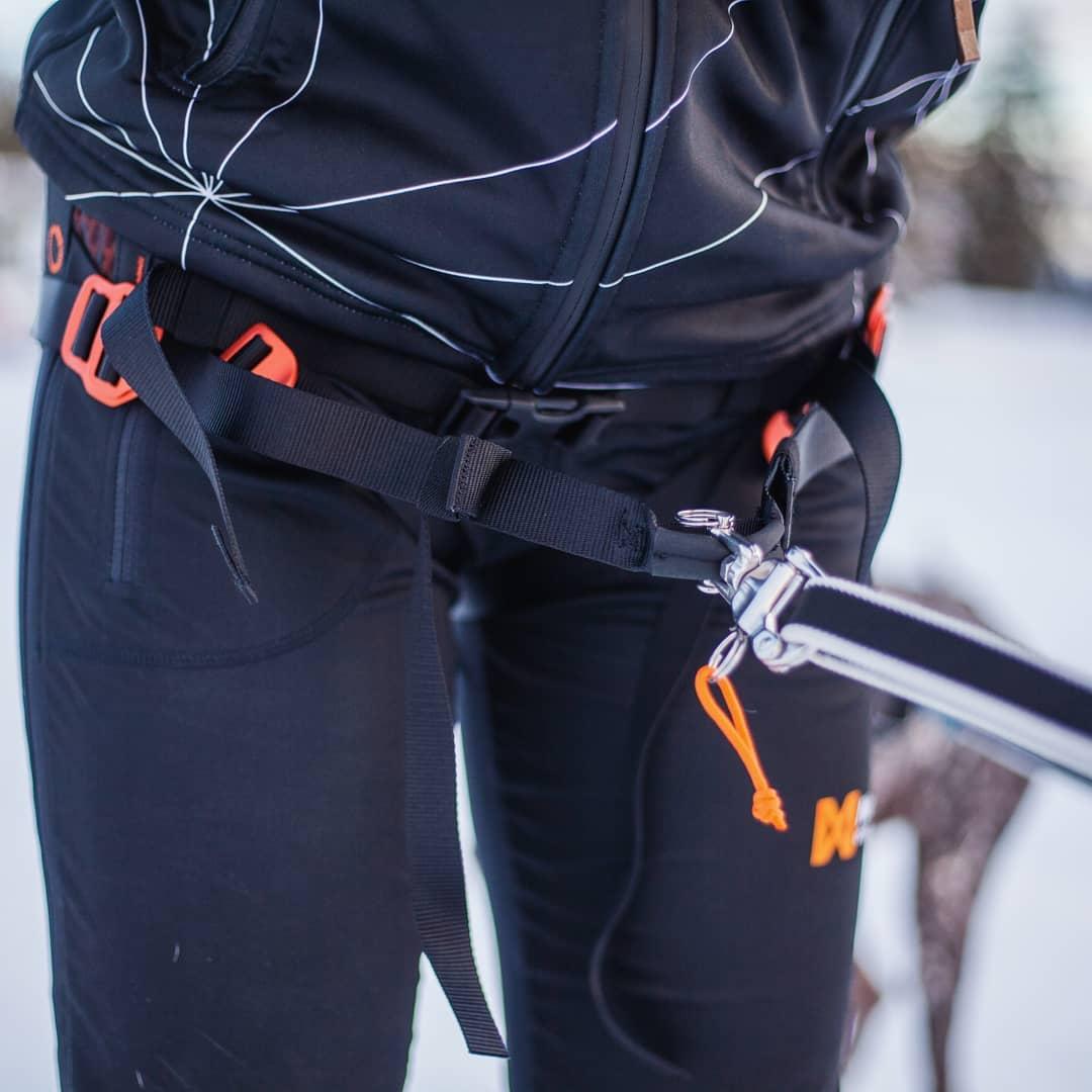 Non-Stop Dogwear Løype Belt