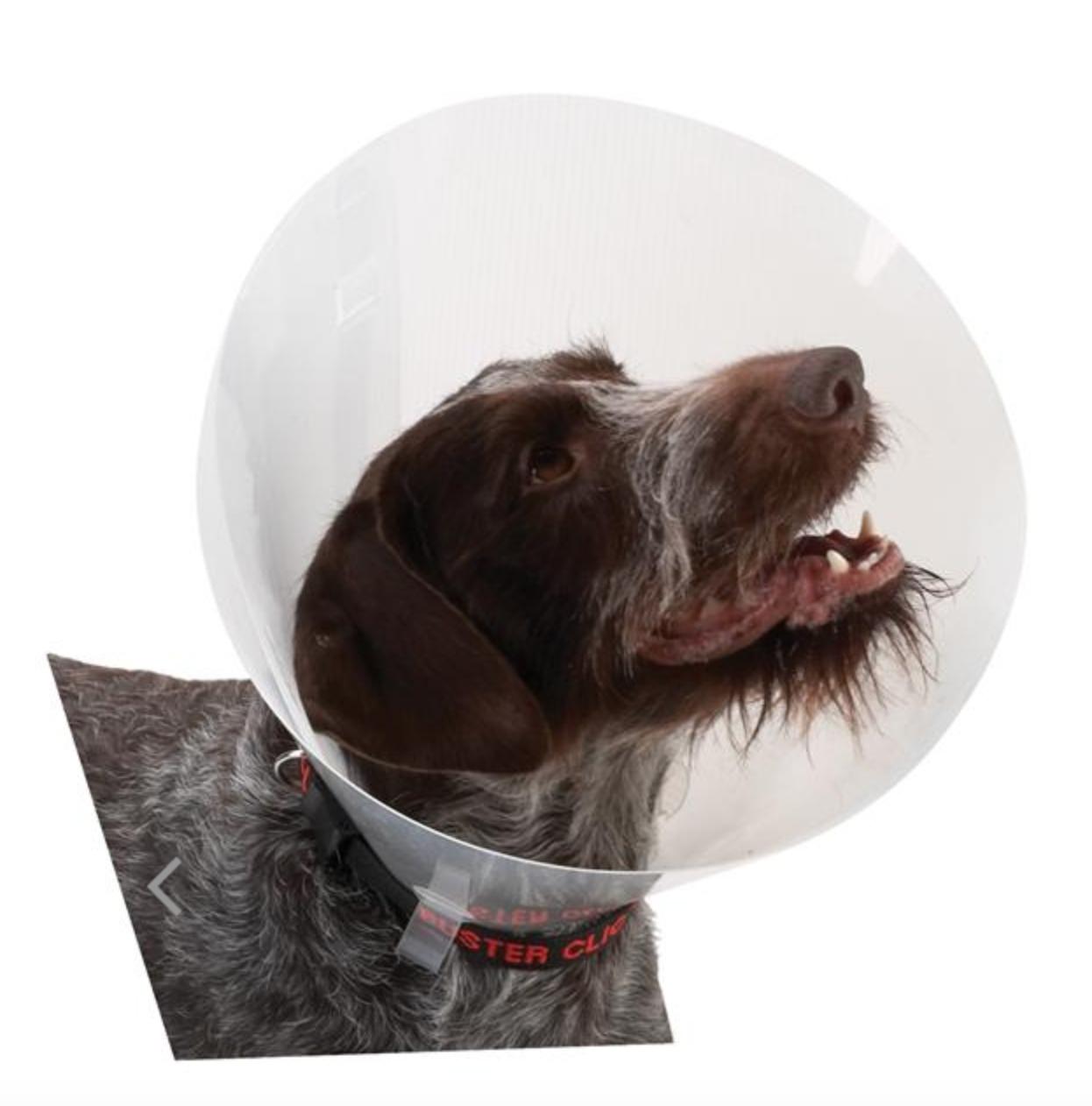 Buster original hundkrage