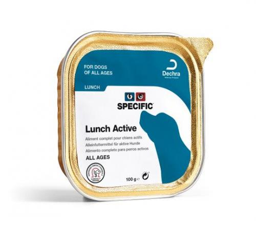Specific Lunch