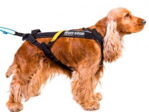 Non-stop Dogwear Freemotion trekksele