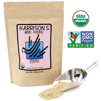 Harrisons Bird Foods Juvenile Handfeeding Formula