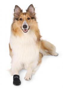 Trixie Hundskor Walker Care