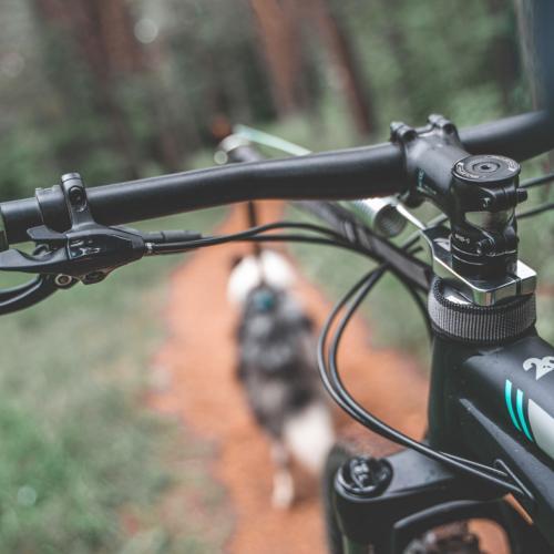 Non-stop Dogwear Bike Antenna