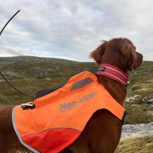 Non-stop Dogwear Protector Vest GPS