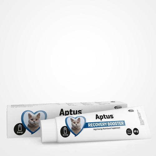Aptus Recovery Booster For Cats