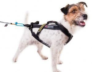 Non-stop Dogwear Freemotion Harness