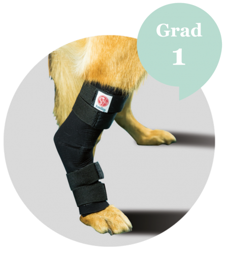 Scandi Orthopedic Tarsal Ortos, Grad 1