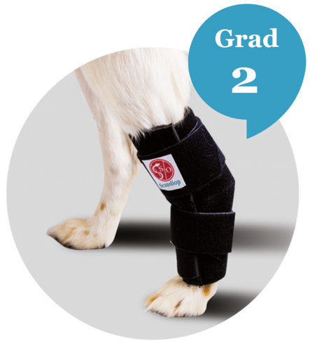 Scandi Orthopedic Tarsal Ortos, Grad 2