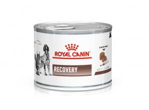 Royal Canin Veterinary Diets Gastrointestinal Recovery Ultra Soft Mousse
