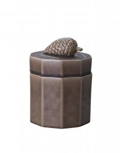 Can pine cone, umber