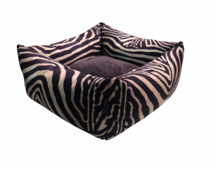Monroe Wild life Zebra