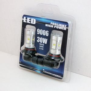 Dimljus 9006 30W Foglight LED