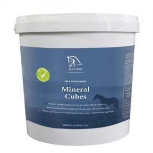 Blue Hors Mineral Cubes