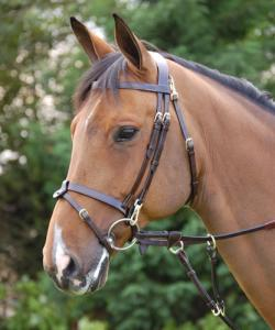 Dyon Working bridle, slät nosgr S/S