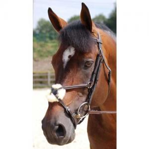 Dyon Working bridle, mex nosgr S/S
