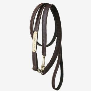 Kentucky Leather Covered Chain Lead