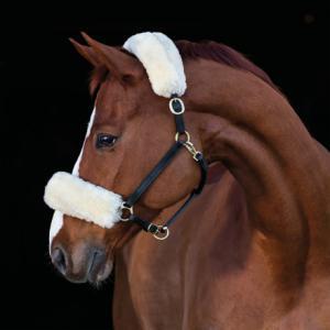 Hansbo Nack/nosludd i fårskinn med karborre