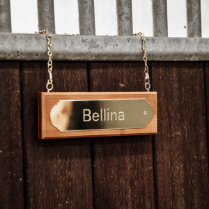 Stable nameplate hanger Kentucky