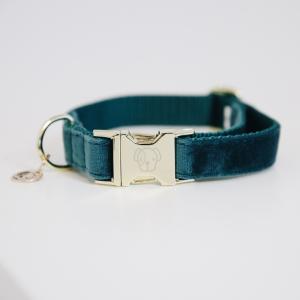 Kentucky Dog Collar Velvet Emerald