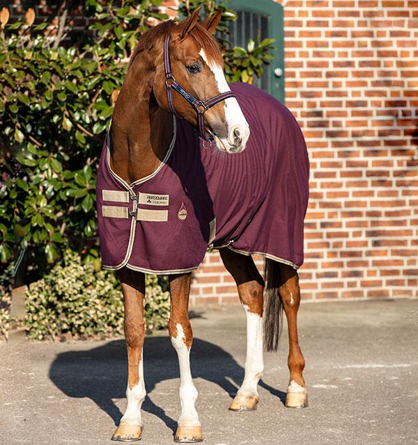 Horseware Amigo stable sheet Fig/Tan